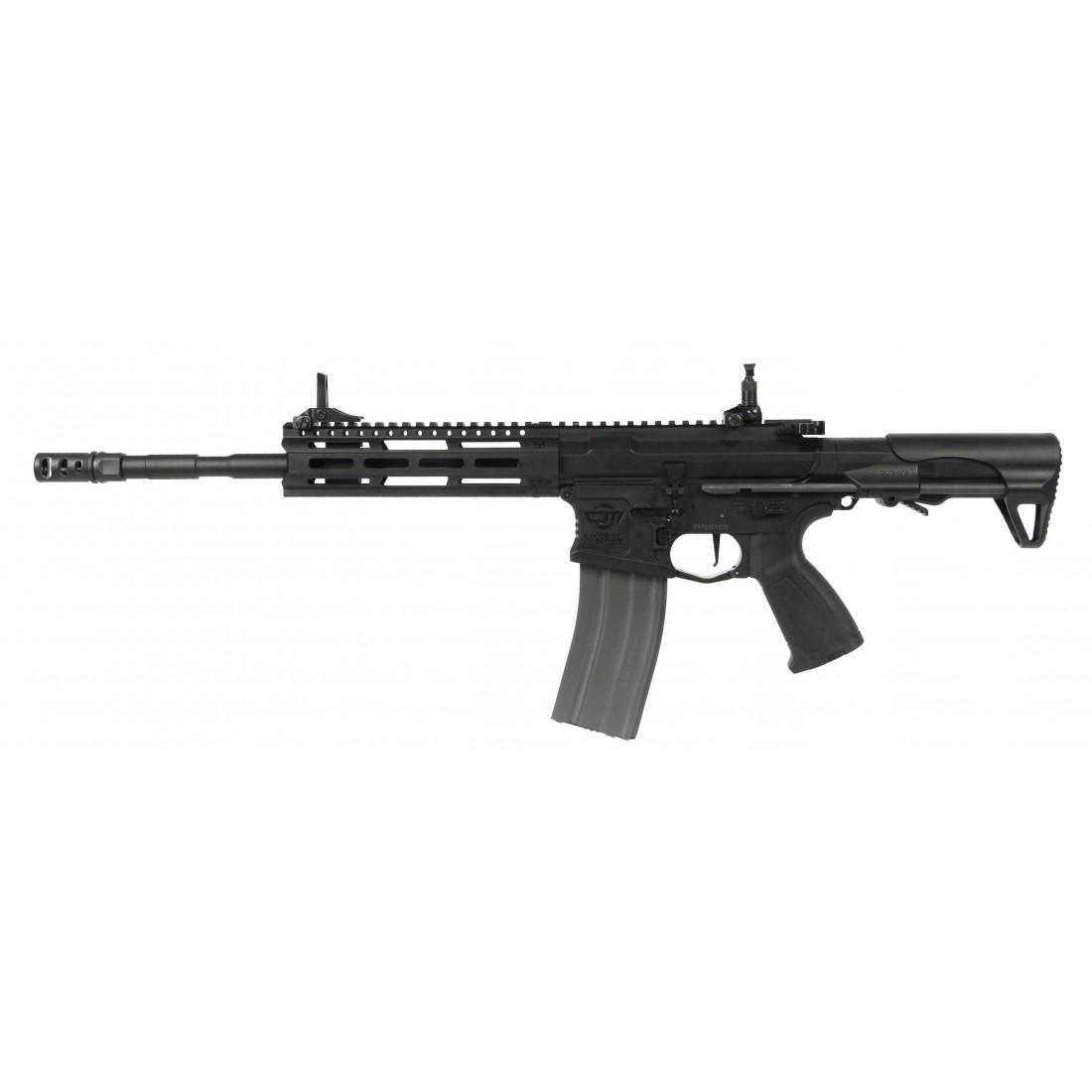 AEG CM16 Raider L 2.0E bk (EGC-16P-R2E-BNB-NCM) [G&G]