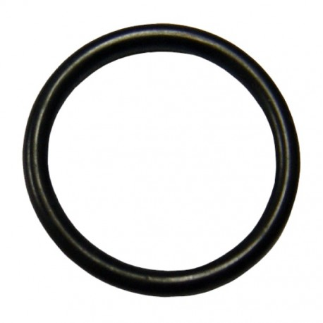 O-Ring Seal for Piston Head [FPS]