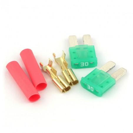 Micro Fuse (2pcs) [GATE]